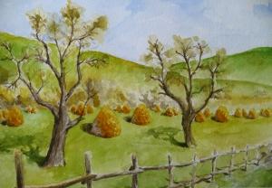 Maramures haystacks