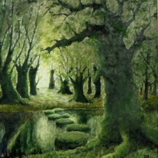 Pădurea Vrăjitorului - (Wistman's Wood)