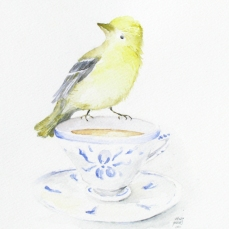 teagoldfinch
