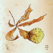 chestnutleaf