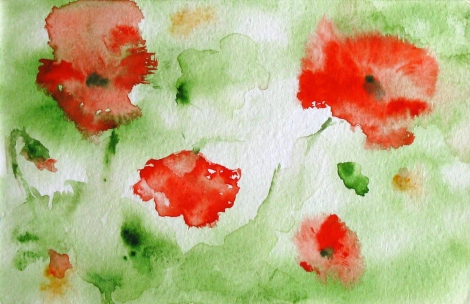 poppies02