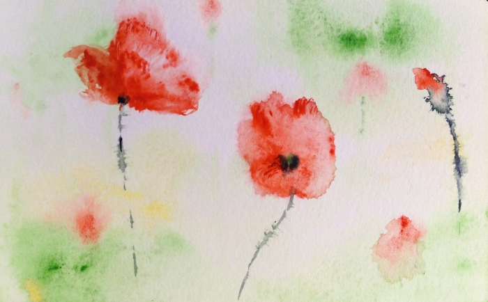 poppies03