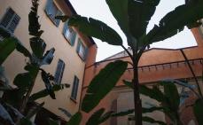 Bologna Music Museum and Music Library in the Palazzo Aldini Sanguinetti